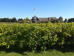 Rossignol Estate Winery