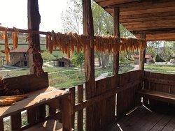 Aktopraklik Hoyuk Arkeopark ve Acikhava Muzesi