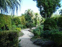 Montpelier Arboretum