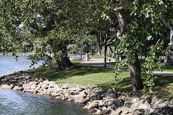 Wentworth Park