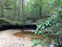 Pickle Springs Natural Area