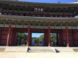 Seoul Urban Adventures