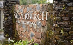 Silverbirch at Birchwood