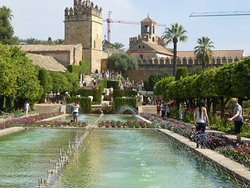 Tour Andalucia International