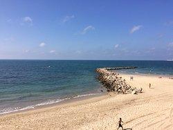 Playa El Palmar