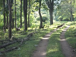 Muthodi Wildlife Sanctuary