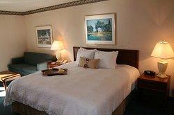 Hampton Inn & Suites Tampa - North