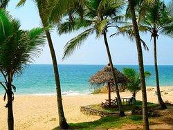 Paradise Gardens Beach Resort & Ayurveda
