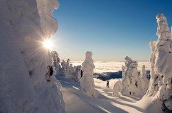 Sun Peaks Ski Area