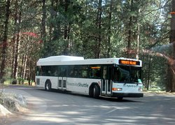 Yosemite Valley Shuttle System