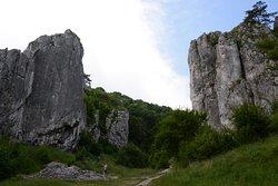 Bolechowicka Valley