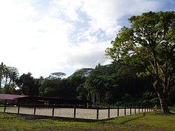 Cadichon Vallee