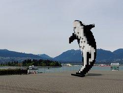 8-bit Orca