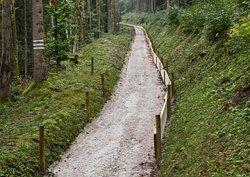 Historische Bobbahn Rießersee