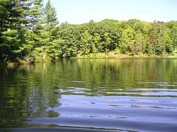 Lioness Lake