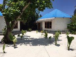 Blue World Dharavandhoo Guest House
