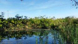 Riserva Naturale fiume Ciane