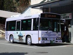 Kojak Bus