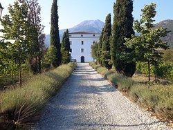 Casa Guelfucci