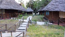 Mafia Beach Bungalows