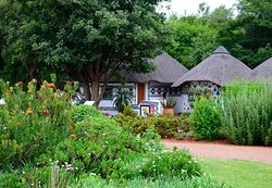 Pretoria National Botanical Garden