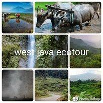 Bogor Halimun National Park Tour