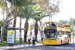 Yellow Bus Tours Funchal