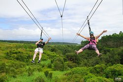 Zip Line Through Paradise