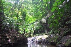Reserva Natural El Cielo
