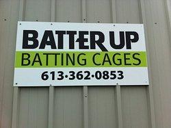 Batter Up Batting Cages