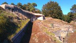 Bunkers Terschelling