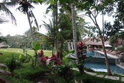 Hotel de charme à Ubud