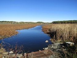 Great Meadows National Wildlife Refuge