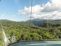 Tropic Wings Cairns Tours
