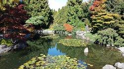Kasugai Japanese Garden