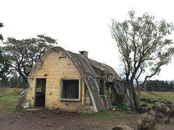 Isidore Farm