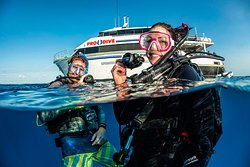 Pro Dive Cairns Day Trips
