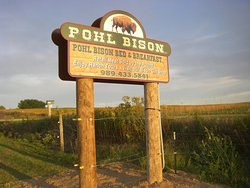 Pohl Bison Bed and Breakfast