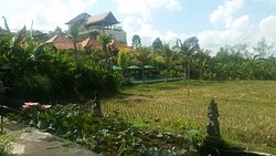 Nice Place In Ubud. Good Location and Clean