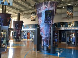 The Carolina Basketball Museum