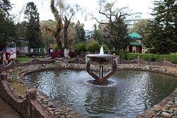 حديقة السيدة هايداري