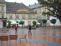 Timisoara Tour Guide