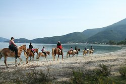 Bavarian Horse Riding Stables