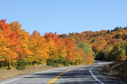 Old Canada Road