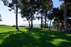 Pines Park