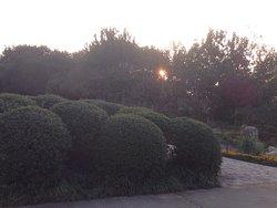 Hefei Botanical Garden