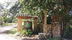 Casa Del Nonno Vitivinicola