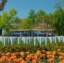 Arlington National Cemetery Tours