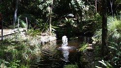 Stony Range Regional Botanic Garden