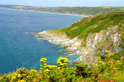 Rame Head Heritage Coast